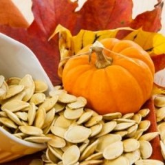 Ingredient Spotlight: Pumpkin Seed