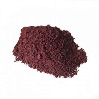 Blueberry 10:1 Powdered Extract